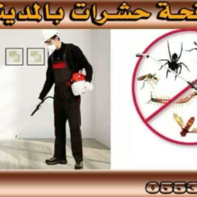 شركة مكافحة حشرات بالمدينة المنورة انجاز المدينة 0553885731 لمكافحة الحشرات بالمدينة المنورة مكافحة النمل الابيض مكافحة حشرات رش مبيد