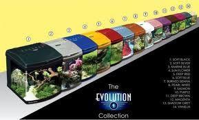Venta de Acuario Evolution Evolution es un Nano-acuario, diseñado para construir biotopos individuales naturales. Adaptable para agua marina, invertebrados, terrarios, gambarios etc.. Disponible