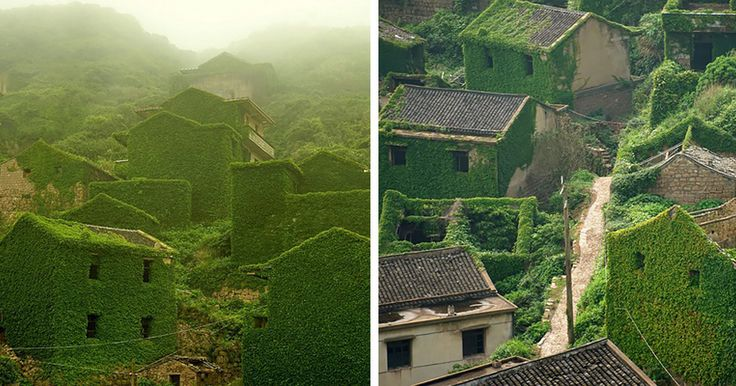 Abandoned Chinese Fishing Village Being Swallowed By Nature   Bored Panda