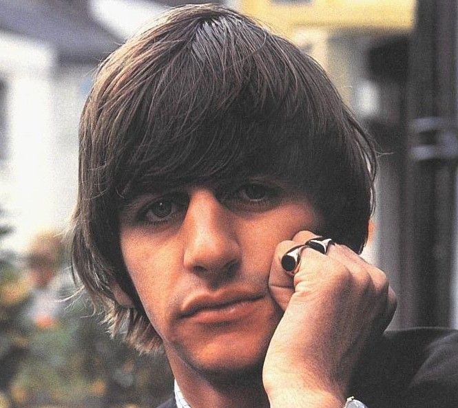 little Ringo :3 awe, he's even wearing his rings!!