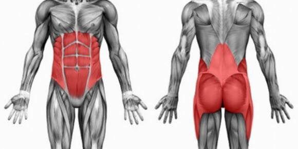 » Músculos estabilizadores que afectan a la zona lumbar
