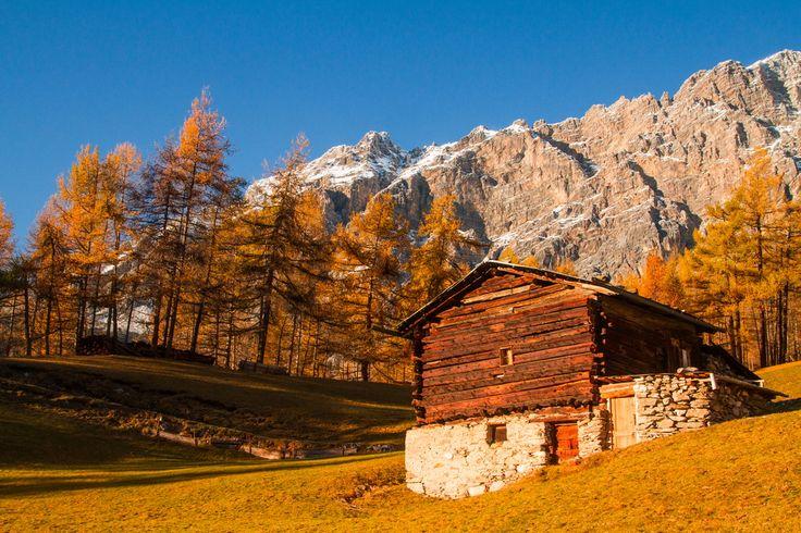 Paesaggi in Valtellina #Valfurva. Una baita sulla strada dell'Ables in autunno.