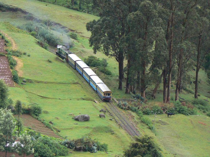 El tren de la montaña de Nilgiri.  Coloreable India ofrece India tours y servicios de viajes para que tus vacaciones sean inolvidables y emocionantes. Ofrece tours de grupos pequeños de gente española     http://www.colourableindia.com/
