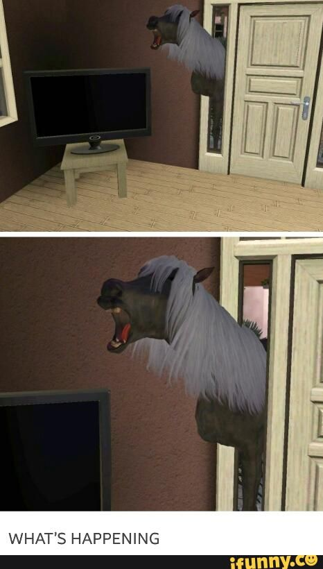 sims gone wrong - Google Search