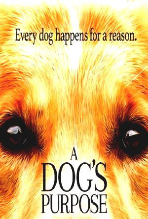 Ansehen before this Cinema deleted Bekijk english A Dogs Purpose A Dogs Purpose BoxOfficeMojo Online free Regarder A Dogs Purpose Online Iphone Premium CineMaz Online A Dogs Purpose 2016 #CloudMovie #FREE #Movien Love Mercy Full Movie 2016 Part 1 This is Complete