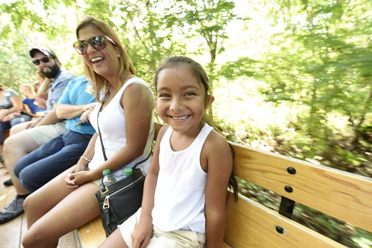 Guests Go Off-The-Beaten Path with New Escape to Walt's Wilderness Resort Offering