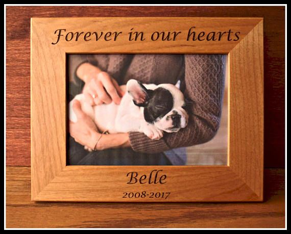Dog Picture Frame Memorial Pet Portraits Personalized Pet Picture Personalized Dog Customized Gift Pet Memorial Christmas Birthday