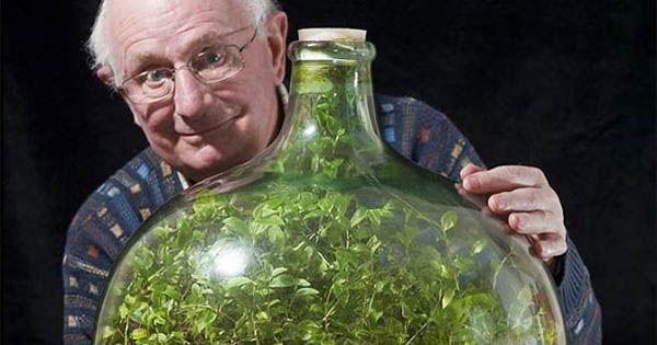 Záhradku v demižóne nepolial nikto 44 rokov a stále rastie. Roku 1960 ju vytvoril David Latimer od vtedy ju polial len raz v roku 1972. Sebestačný ekosystém
