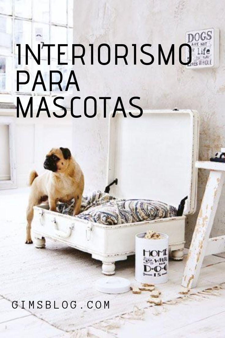 Interiorismo Para Mascotas Interiores Camas Infantiles Mascotas