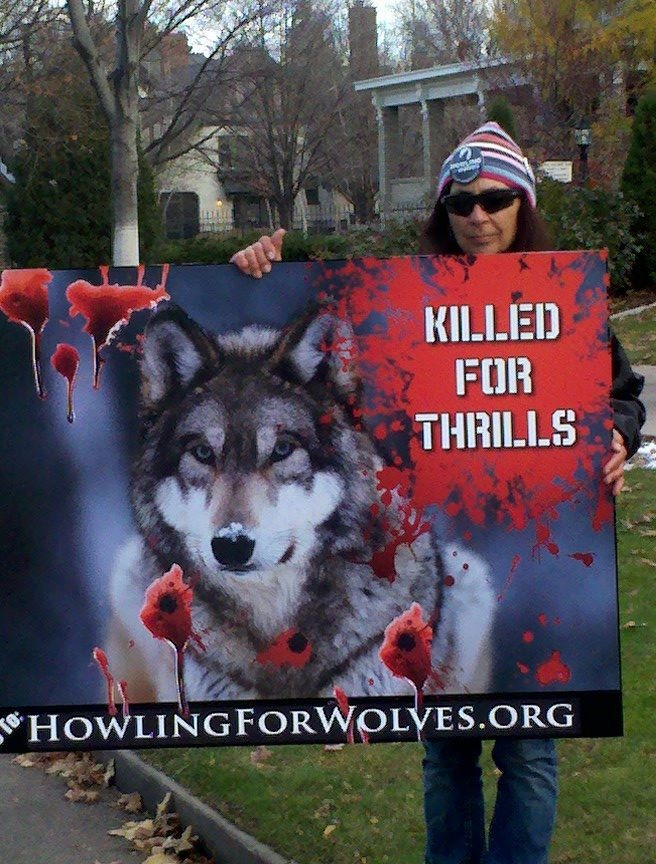 """#Stop the wolf """"hunt""""!"""