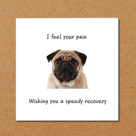 Get Well Soon Card Getwell Pug Puglife Getwellcard Get Well