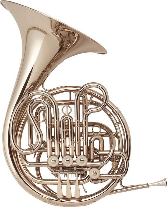 This is my horn, or a picture of the same kind of horn. I'm happy to say that mine didn't cost $3700 in 1986!-Jennifer