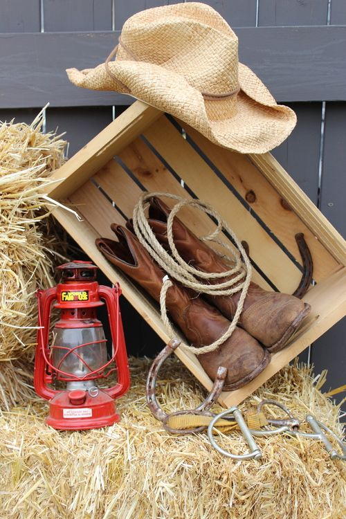 Best 25 western party decorations ideas on pinterest for Decoration western country