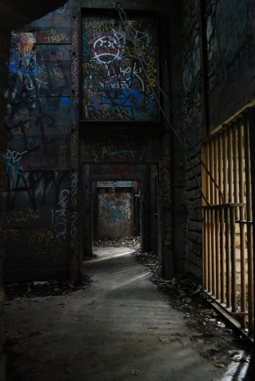cage at an abandoned zoo in Los Angeles