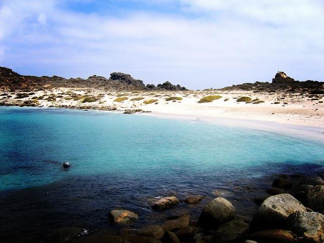 Isla Damas, La Serena, Chile