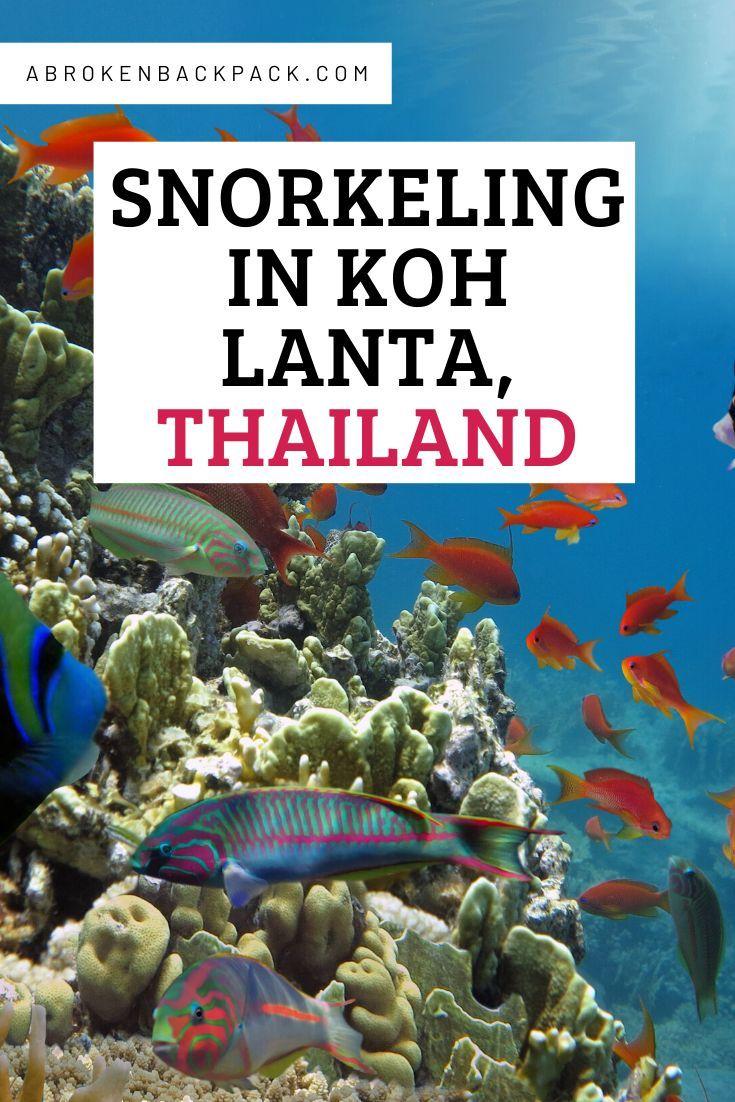 Best Snorkeling Trip from Koh Lanta 2020 A Broken