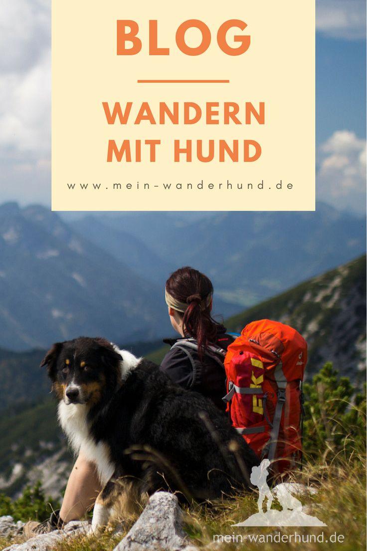 Wandern mit Hund - der Blog mit Tipps, Routen und Erfahrungen