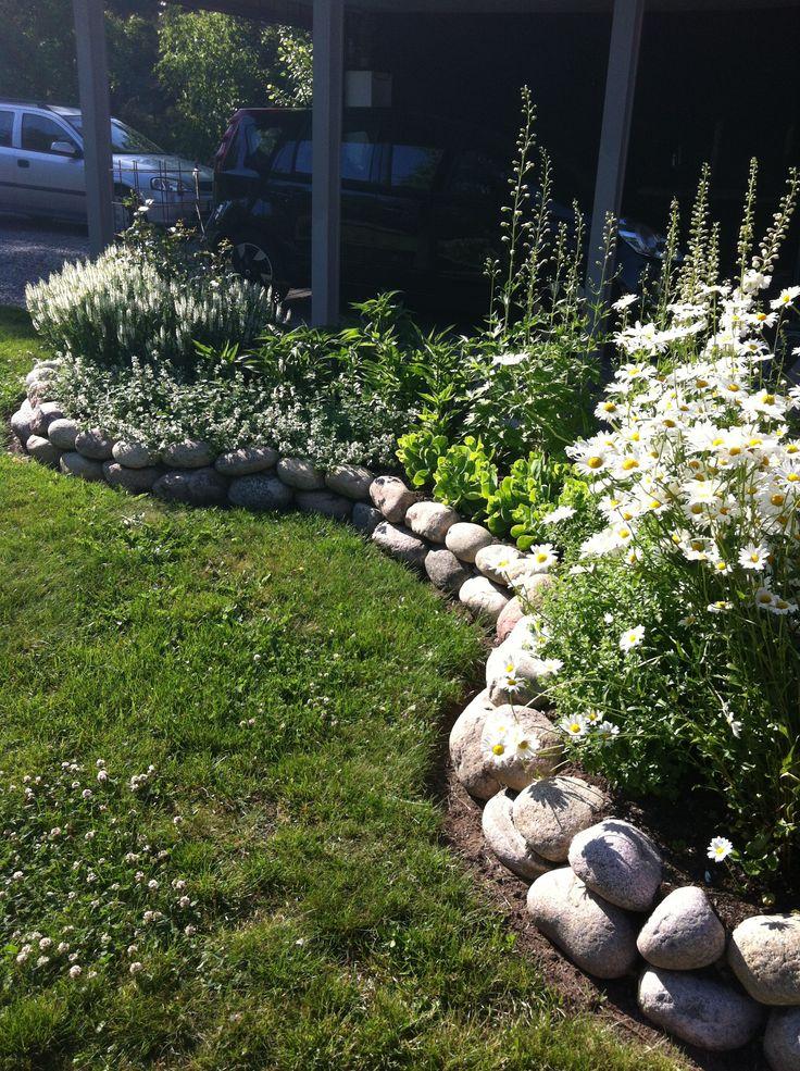 My white flowerbed