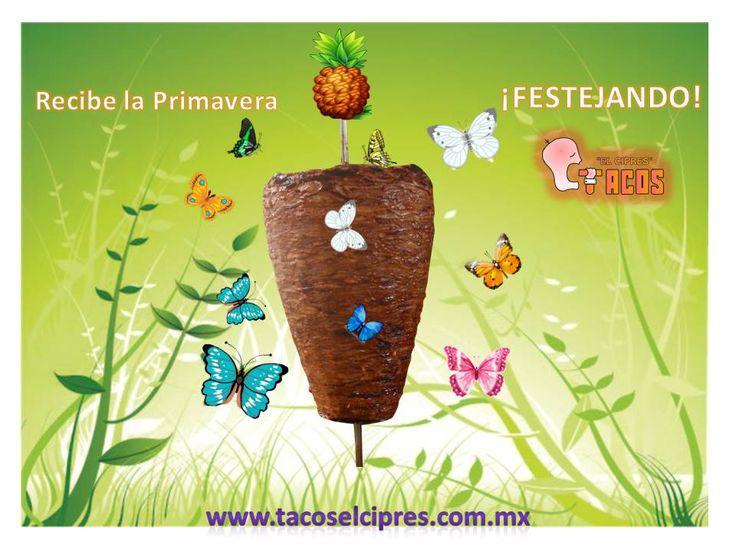 Para festejar en Primavera www.tacoselcipres.com.mx