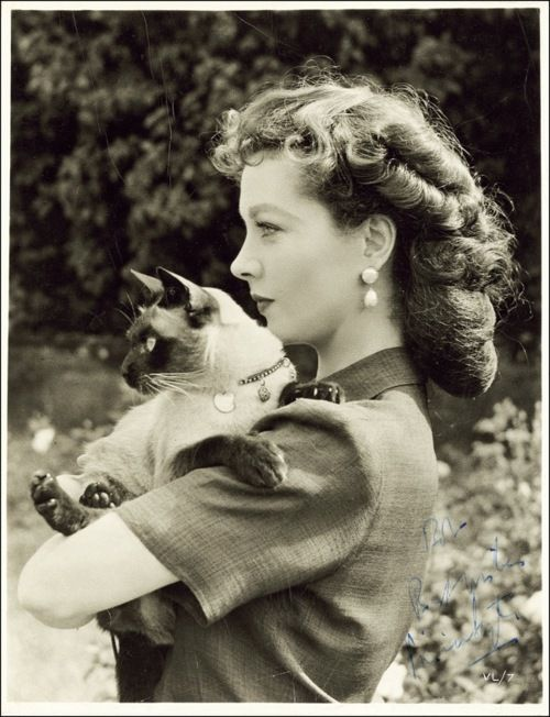 Vivien Leigh with her Siamese cat named New Boy