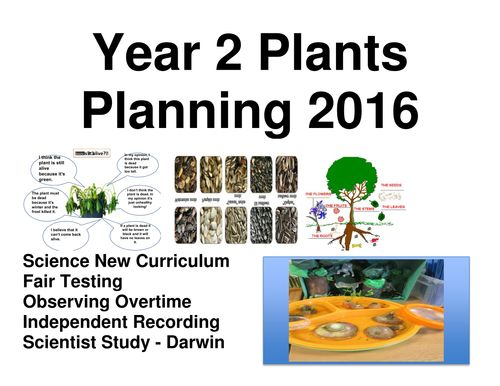 Plants Complete Planning Unit Year 2