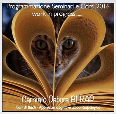 Almalotus ........ di Debora Carniato BFRAP   Consulente in Fiori di Bach per Animali: Il  MONDO  dei   FIORI DI BACH per ANIMALI :      ...