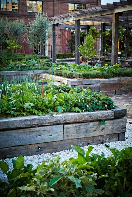 raised vegetable beds, via the grounds garden