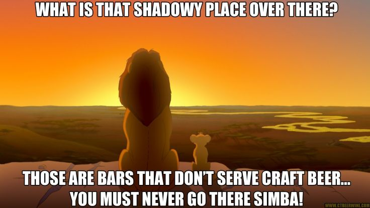 cat meme quote funny humor grumpy beer lion king disney
