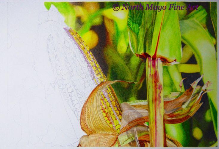 'The Dulcet Tones of Autumn' WIP 11. Corn, corn, and more corn