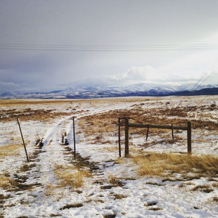 Montana Ranch House By Suyama Peterson Deguchi: Snowy Pasture On The Eastern Front • Linda Reynolds