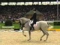 Hip Hop Dressage video. I don't like the song but this horse loves to dance and this is incredible