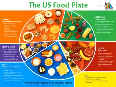 Types Of Dinner Plates