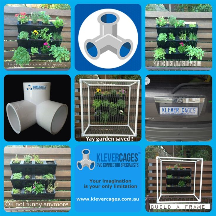PVC connectors protecting a vertical garden from pests. Build anything you can think of using connectors , pipe and netting from Klever Cages