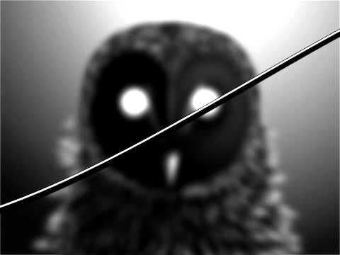 """I Love You But I've Chosen Darkness - """"The Owl"""" (Official Video) - YouTube"""