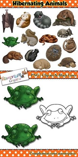 This Hibernating Animals Clip art set consists of realistic images. There are a total of 14 animals.
