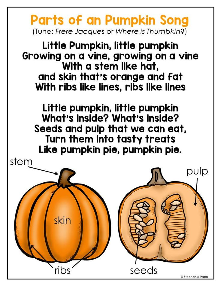Helps students remember the parts of a pumpkin with this cute song!