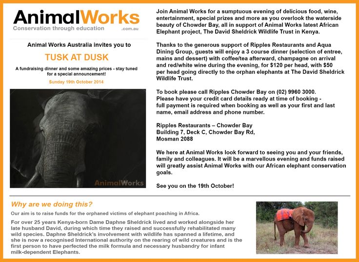 Come and join us for the TUSK AT DUSK fundraising dinner to help the eles at The David Sheldrick Wildlife Trust!