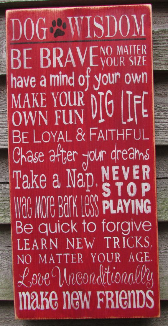 dog sign, funny dog sign, rustic decorm primitvie home decor, dog wisdom sign, hand painted sign, wood signs
