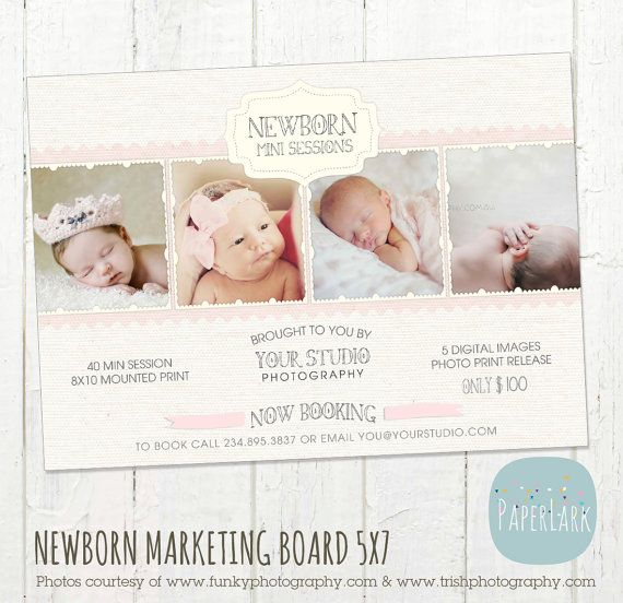 Newborn mini sessions photography marketing by paperlarkdesigns