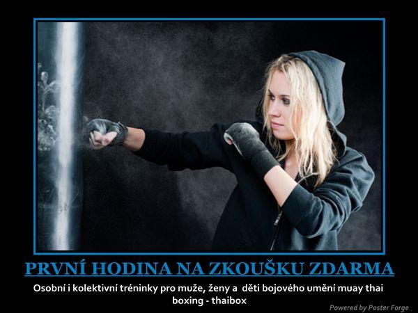 http://tiger-muay-thai.cz   Muay thai fitness pro ženy a dívky