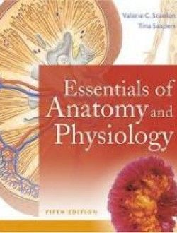 24 best books images on pinterest books online beauty products essentials of anatomy and physiology5 edition free ebook online fandeluxe Gallery