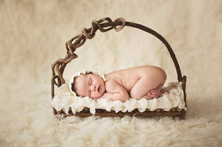 Jd vintage props newborn props newborn photography twisty vine bed 65 cream