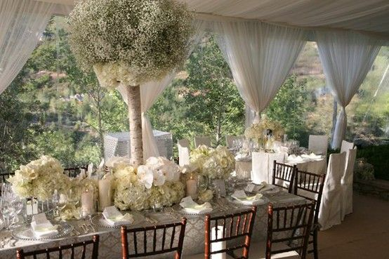 Table/chairs/tent