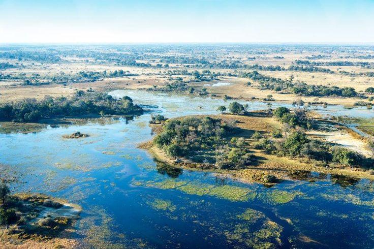 Okavango Delta, Botswana. www.africantravel.com #okavango #botswana…