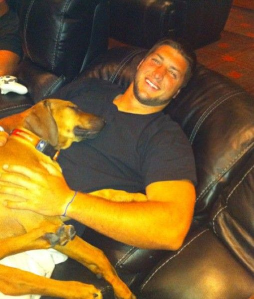 Tim Tebow with his Rhodesian Ridgeback. The New York Jets quarterback loves his Rhodesian Ridgeback as much as he loves football. But when Tebow left Denver to play for the Jets, he knew the dog... PawNation