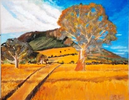 """""""Fields of Gold' Late afternoon in the Grampians SA"""