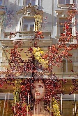 Vienna, again... Merisi's Vienna: http://www.viennaforbeginners.com