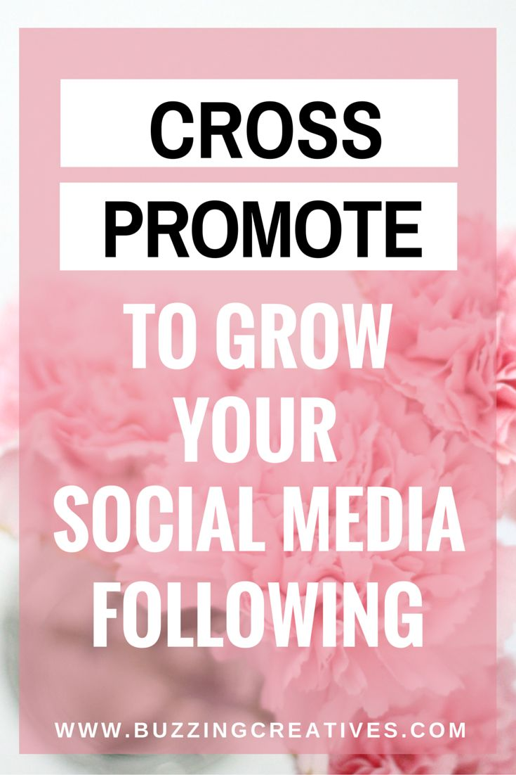 Let us help you increase your followers, sales and traffic on Instagram  with Our FREE Instagram Course!                                          Sign up for the FREE Instagram Course