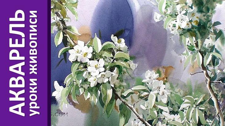 Акварель - цветущая ветка (уроки акварельной живописи)