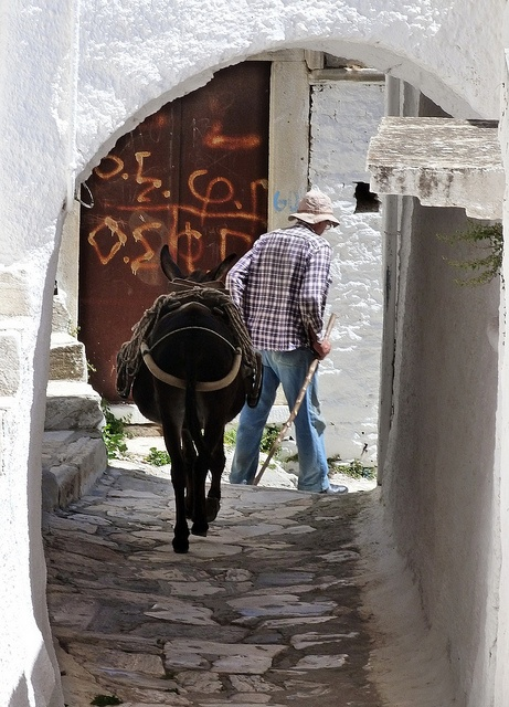 Man and donkey   Greece